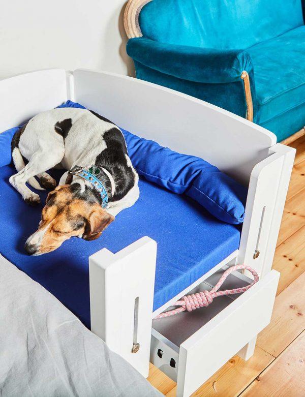 cama-martina-perro-dormido